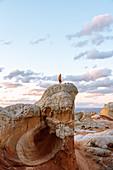Tourist exploring White Pocket in Vermillion Cliffs,Utah,United States