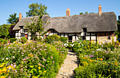Anne Hathaway's Cottage, a thatched cottage and cottage garden, Shottery, near Stratford upon Avon, Warwickshire, England, United Kingdom, Europe