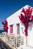 Restaurant, Old Port of Naoussa, Paros Island, Cyclades Group, Greek Islands, Greece, Europe