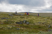Hikers on Ringebufjellet, Rondanevegen, Oppland, Norway, Europe