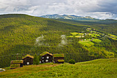 Traditional homestead in Myreng above Espedalen, Oppland, Norway, Europe