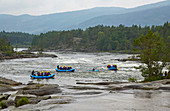 White water rafters on the Otra near Syrtveit, Evje, Setesdalen, Aust-Agder, Norway, Europe