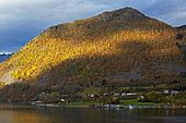 In the Hjoerundfjorden near Urke, Nahe Alesund, Moere og Romsdal, Norway, Europe