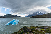 Icebergs on Lago Grey, with Cerro Paine Grande and Grey glacier in the background, Torres del Paine National Park, Chile, South America