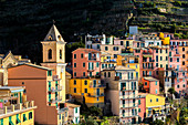 Church and traditional houses of Manarola, Cinque Terre, UNESCO World Heritage Site, Liguria, Italy, Europe