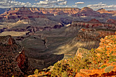 Grand Canyon South Rim viewed from Cedar Ridge along the South Kaibab Trail, UNESCO World Heritage Site, Arizona, United States of America, North America