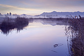 Shortly before sunrise on the Ach, Uffing, Staffelsee, Upper Bavaria, Bavaria, Germany