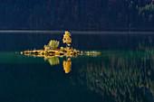 Small island in autumnal Eibsee, Grainau, Upper Bavaria, Bavaria, Germany