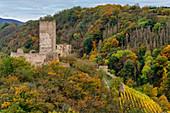 Die Niederburg in Kobern-Gondorf im Herbst, Mosel, Rheinland-Pfalz, Deutschland