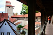 City wall, old town of Nördlingen, Swabia, Bavaria, Germany
