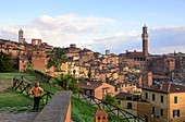View of the town hall and Siena, Tuscany, Italy