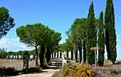 Le Crete south of Siena, Tuscany, Italy