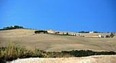 Le Crete near Pienza, Tuscany, Italy