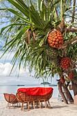 Cambodia, Sihanoukville, Otres Beach, beach bar