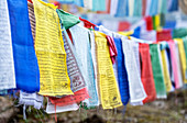Prayer flags hung to carry people's prayers throughout the land of Bhutan, Asia