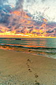 African sunset over footprints on tropical sand beach, Le Morne Brabant, Black River, Mauritius, Indian Ocean, Africa