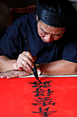 Man doing traditional Chinese writing (calligraphy) in ink using a brush, The Temple of Literature, Hanoi, Vietnam, Indochina, Southeast Asia, Asia