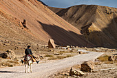 Man with his horse in the valley of Chehel Burj (Forty Towers fortress), Yaklawang province, Bamyan, Afghanistan, Asia