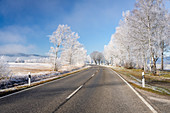 Country road between Schlehdorf and Kochel am See on a frosty morning, Bavaria, Germany.