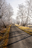 Bike and foot path between Schlehdorf and Kochel am See on a frosty morning; Bavaria; Germany.