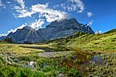 Wetterhorn with moor lake in the foreground, Grosse Scheidegg, Grosse Scheidegg, Rosenlaui, Rosenlaui Valley, Bernese Oberland, UNESCO World Heritage Site Swiss Alps Jungfrau-Aletsch, Bernese Alps, Bern, Switzerland