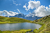 View of Wetterhorn with mountain lake in the foreground, Grosse Scheidegg, Grosse Scheidegg, Bernese Oberland, UNESCO World Natural Heritage Swiss Alps Jungfrau-Aletsch, Bernese Alps, Bern, Switzerland