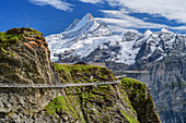 Cliff Walk with a view of Schreckhorn, Tissot Cliff Walk am First, Grindelwald, Bernese Oberland, UNESCO World Natural Heritage Swiss Alps Jungfrau-Aletsch, Bernese Alps, Bern, Switzerland