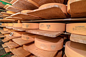 Large wheels of cheese ripen in cheese cellars at direct marketers, Simmental, Bernese Alps, Bern, Switzerland