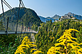 Several people walk over the Highline 179 rope bridge with Ehrenberg castle ruins in the background, Reutte, Tyrol, Austria