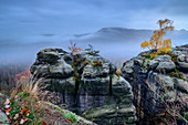 Foggy mood on rock towers of the Kuhstall, Kuhstall, Kirnitzschtal, Saxon Switzerland National Park, Saxon Switzerland, Elbe Sandstone, Saxony, Germany