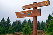 Signpost in the Harz National Park, Brocken, Harz National Park, Harz, Saxony-Anhalt, Germany