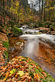 Stream with autumn leaves, Ilsetal, Brocken, Harz National Park, Harz, Saxony-Anhalt, Germany