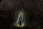 Silhouette man at night with starry sky in birch forest, Germany, Brandenburg, Spreewald