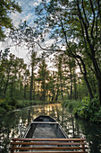 Kahnfahrt mit traditional kahn at sunrise in Spreewald, Germany, Brandenburg