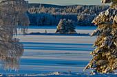 Ein See im tiefen Winter mit verschneiten Bäumen, Slagnäs, Lappland, Schweden