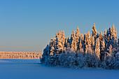 See mit Eis und Schnee und winterlichem Wald, Mellanström, Lappland, Schweden