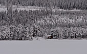 Einsame Hütte in der verschneiten Landschaft im Winter, Hällnäs, Lappland, Schweden
