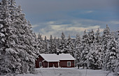 Small wooden house in a snow-covered winter landscape, Arjeplog, Lapland, Sweden