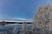 Winterimpression mit vereistem See, Dorotea, Västerbottens Län, Schweden