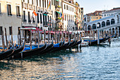 View of the gondolas at the Rialto Bridge on the Grand Canal, Venice, Veneto, Italy, Europe