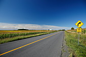 Rural country road, Quebec, Canada