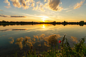 Sunset at Baggersee, Hörblach, Schwarzach, Kitzingen, Lower Franconia, Franconia, Bavaria, Germany, Europe