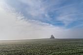 Frostiger Morgen im November in der Nähe von Etting, Oberbayern, Bayern, Deutschland, Europa