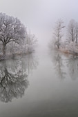 The runoff of the Loisach near Kochel am See in the morning in November, Bavaria, Germany, Europe