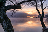 Frosty morning at the Staffelsee in November, Uffing, Upper Bavaria, Bavaria, Germany