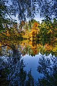 Autumn at the Thanninger Weihern, Upper Bavaria, Bavaria, Germany, Europe