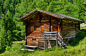 Old alpine hut in East Tyrol, Austria, Europe