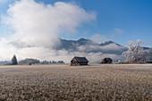 Old barns in Kochelmoos in the morning mist in November, Kochel am See, Upper Bavaria, Bavaria, Germany, Europe