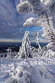 Exceptional fairytale landscape on the Feldberg, Taunus, Hesse, Germany.