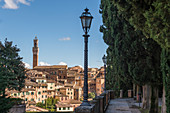 Torre del Mangia in Siena, Province of Siena, Tuscany, Italy